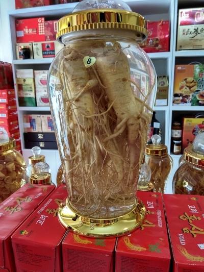 Bình rượu nhân sâm tươi Hàn Quốc 8 lít
